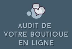 Audit de votre boutique en ligne