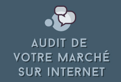 Audit de votre marché sur internet