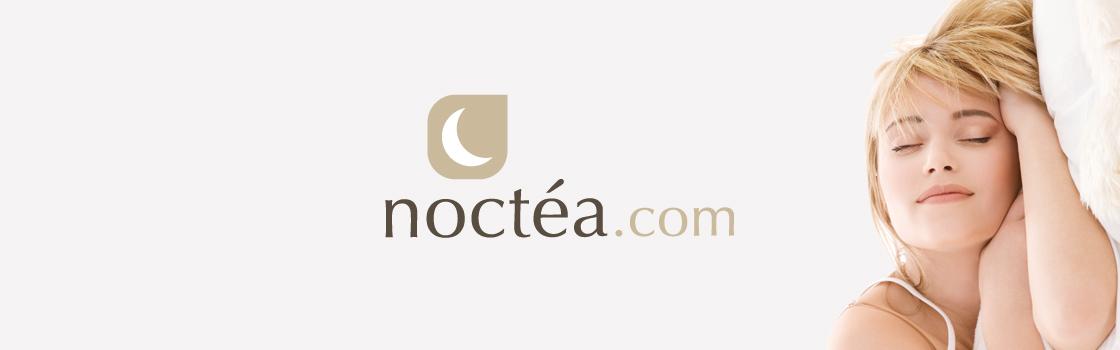 logo_noctea