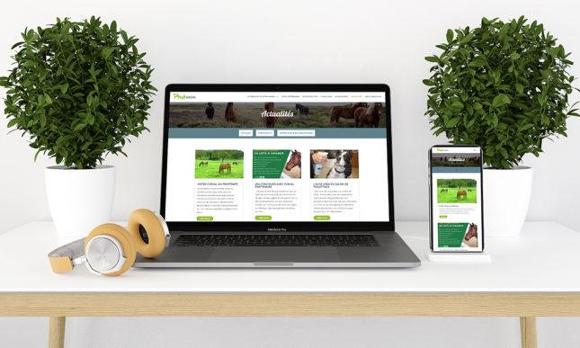 Création site web Phytanim macbookpro