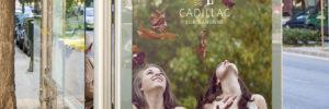 COMMENT INAATIV A IMAGINE LE NOUVEAU LOGO DE LA VILLE DE CADILLAC SUR GARONNE ?
